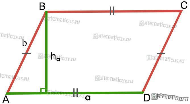 параллелограмм высота