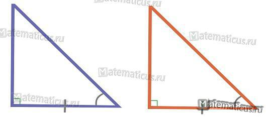 Подобие прямоугольного треугольника по катету и прилежащему углу