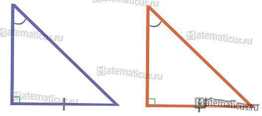 Подобие прямоугольного треугольника по катету и противолежащему углу