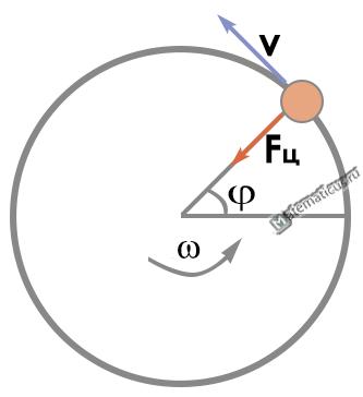Направление центростремительной силы на окружности