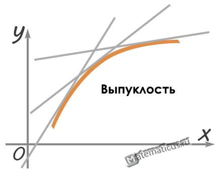 Выпуклость функции график